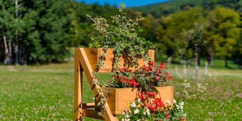 Záhony na pestovanie kvetov
